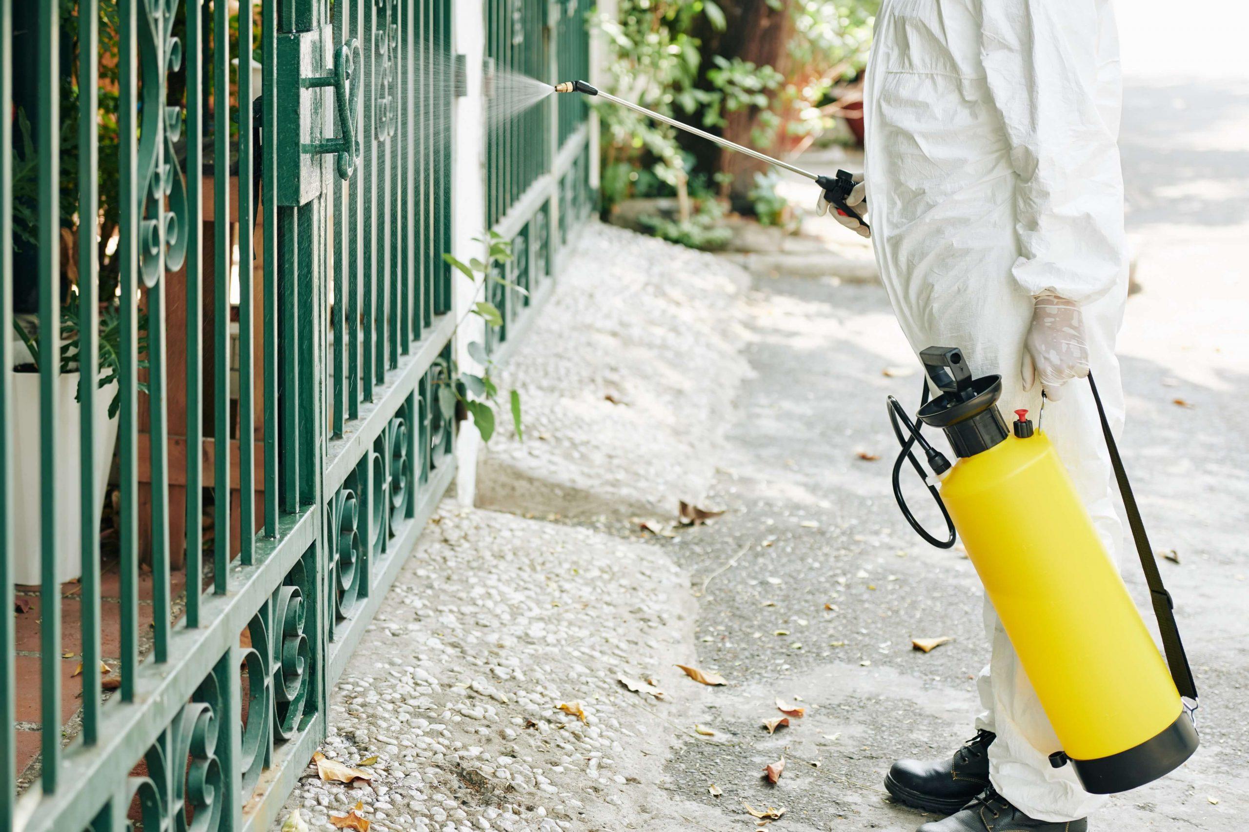 böcek ilaçlama fiyatları istanbul